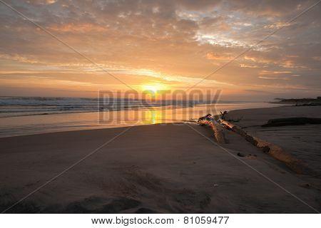 Golden sunrise.