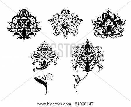 Black lace paisley flowers in persian style