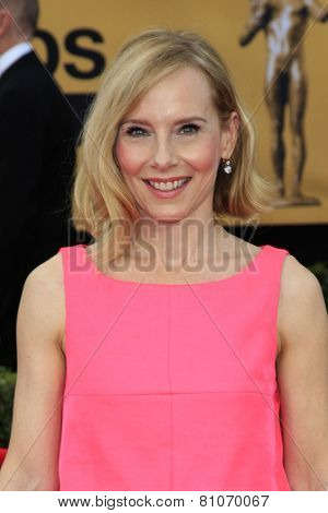 LOS ANGELES - JAN 25:  Amy Ryan at the 2015 Screen Actor Guild Awards at the Shrine Auditorium on January 25, 2015 in Los Angeles, CA