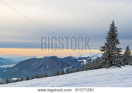 Snowy Mountainside