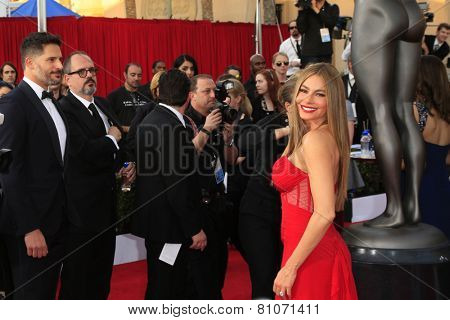 LOS ANGELES - JAN 25:  Sofia Vergara at the 2015 Screen Actor Guild Awards at the Shrine Auditorium on January 25, 2015 in Los Angeles, CA