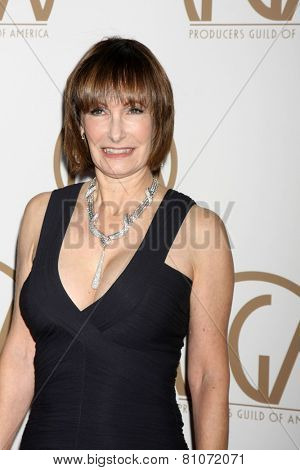 LOS ANGELES - JAN 24:  Gale Anne Hurd at the Producers Guild of America Awards 2015 at a Century Plaza Hotel on January 24, 2015 in Century City, CA