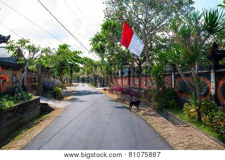 Calm And Tidy Street In Village In Bali, Indonesia