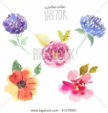 Watercolor painting floral background, vector file