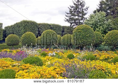 Public garden of box tree and flowers in summer, place of walk and relaxation