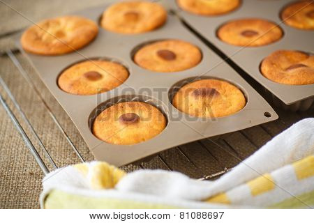 Sweet Cheese Muffins In Silicone Forms