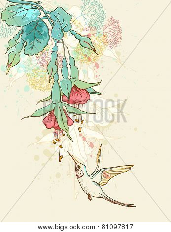Humming-bird And Flowering Branch