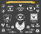 stock photo of working animal  - Lots of vector chicken design elements for your work - JPG