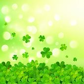 picture of triskele  - Light green vector background with clovers and bokeh effect - JPG