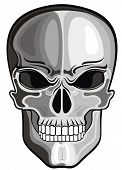 foto of day dead skull  - Vector skull - JPG