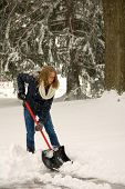 picture of snow shovel  - A young woman shoveling snow during a blizzard - JPG