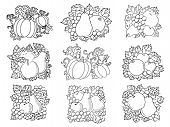 pic of tendril  - Retro sketch fruit and vegetable compositions of fresh apples - JPG