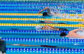 foto of swim meet  - start swimming race in swimming pool performing freestyle - JPG