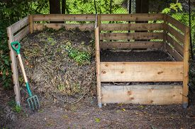 foto of decomposition  - Large cedar wood compost boxes with composted soil and yard waste for backyard composting - JPG