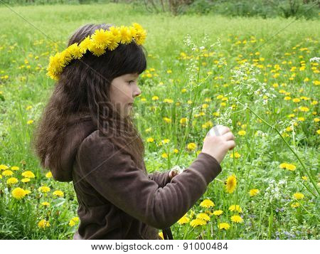 The Girl At The Spring Green Meadow