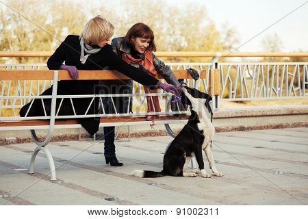 Two young fashion women and a dog outdoor