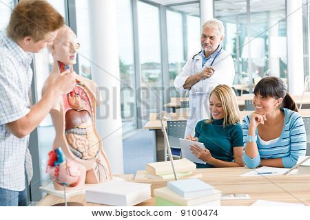 Medical Students With Professor And Human Anatomical Model