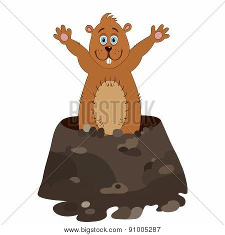 Funny groundhog cartoon