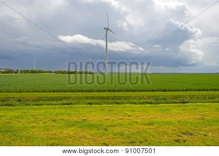 Wind farm and vegetables on a field in spring