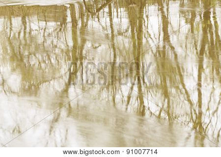Reflection Of Trees In Water.