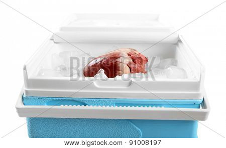 Heart organ in fridge on light background