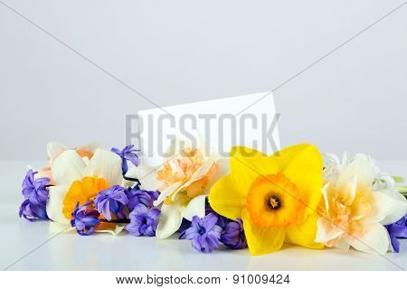 Beautiful bright flowers with card on light background