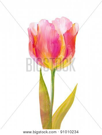 Vintage pink tulip isolated on white. Oil painting.