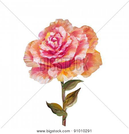 Rose isolated on white, oil painting on canvas
