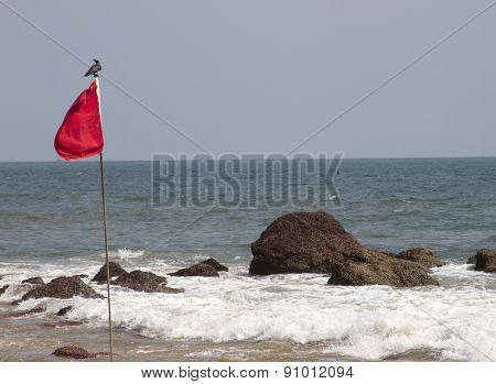 Red flag with the bird sitting on it. GOA India Beach.
