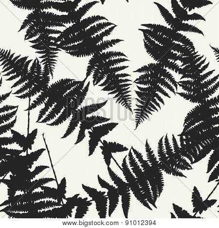 Seamless pattern of fern leaves. Vector illustration