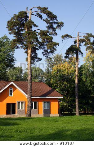 Orange Small House