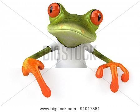 Frog with a white tshirt