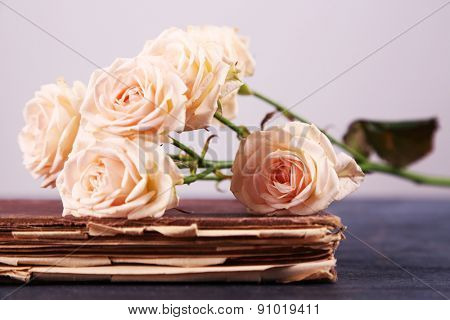 Roses with vintage book on light background