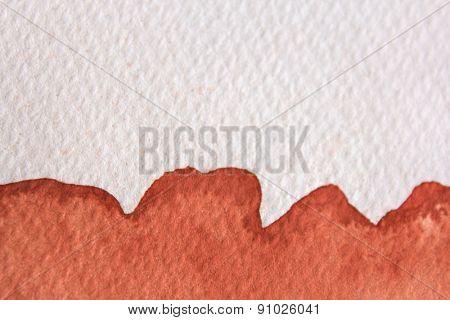Burnt Orange Watercolor 1