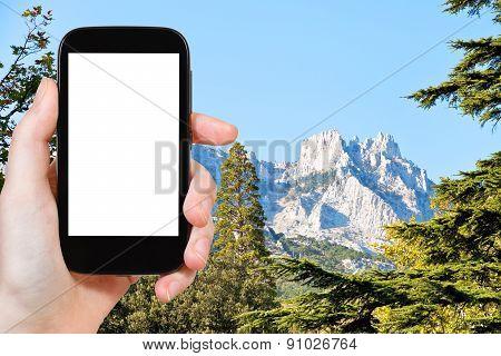 Photo Of Ai-petri Mountain From Alupka, Crimea
