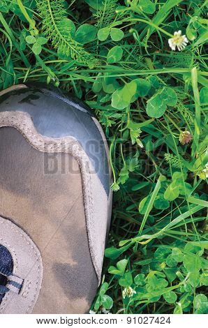 Hiking Boot Off-road Shoe, Wet Green Summer Grass And Clover Pattern Detail, Large Detailed Vertical