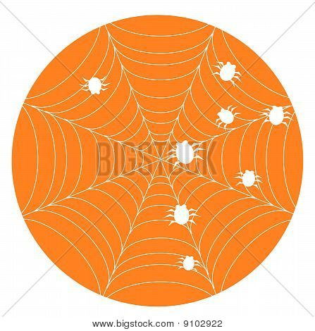 Orange halloween background with web