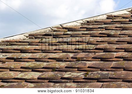 Old Mossy Tiled Roof