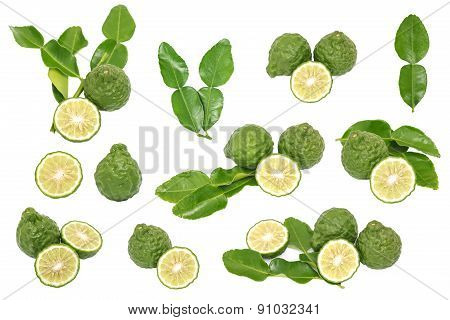 Bergamot Kaffir Lime Leaves Herb Fresh Ingredient Isolated Set