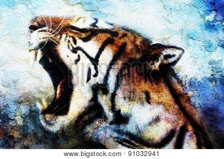 Painting Sumatran Tiger Roaring.