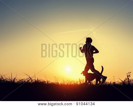 Evening Jogging With Beagle Pet