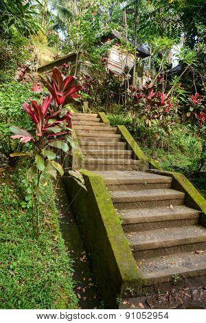 Beautiful Stairs In Balinese Garden, Bali, Indonesia