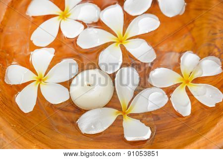 White frangipani flower with candle in water wood bowl