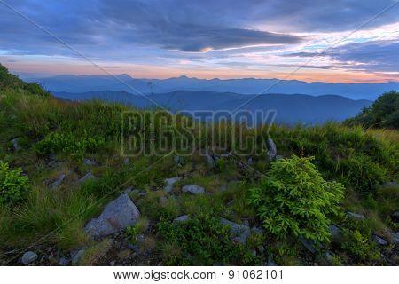 Carpathians mountain in summer time