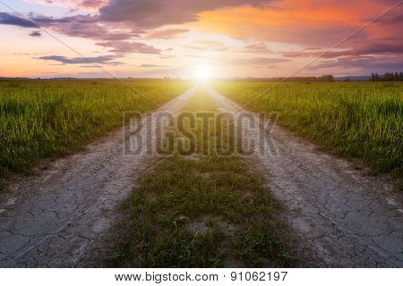 rural road and pink sunset