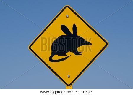 Australian Bilby Sign