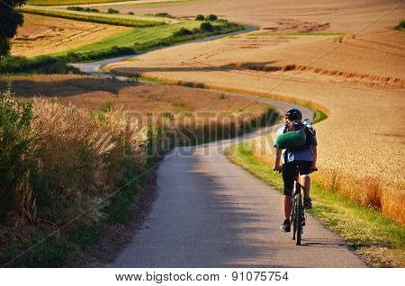 Biker and the wheat field