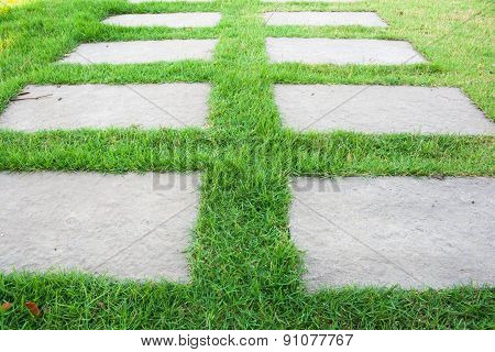 Walkways Stone Pad On green Grass