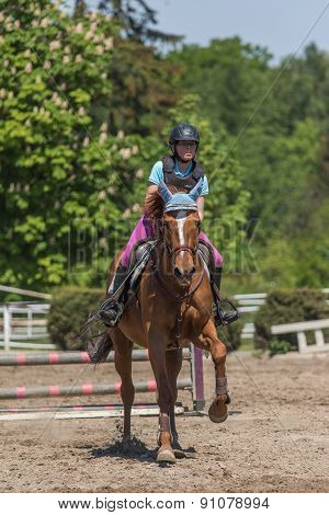 Young Horsewoman On The Brown Horse