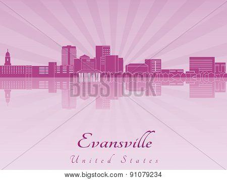 Evansville Skylin In Purple Radiat Orchid